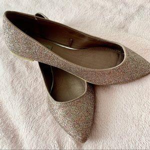 Zara champagne glitter pointy flats